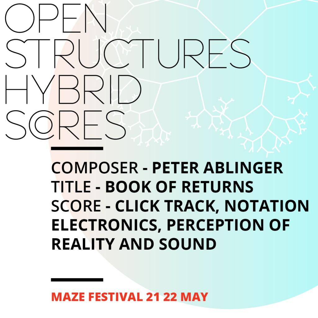 Facebook campaign MAZE festival